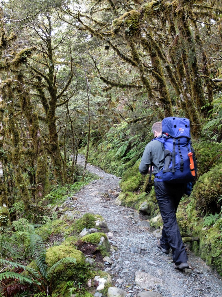 new-zealand-routeburn-track-hiker