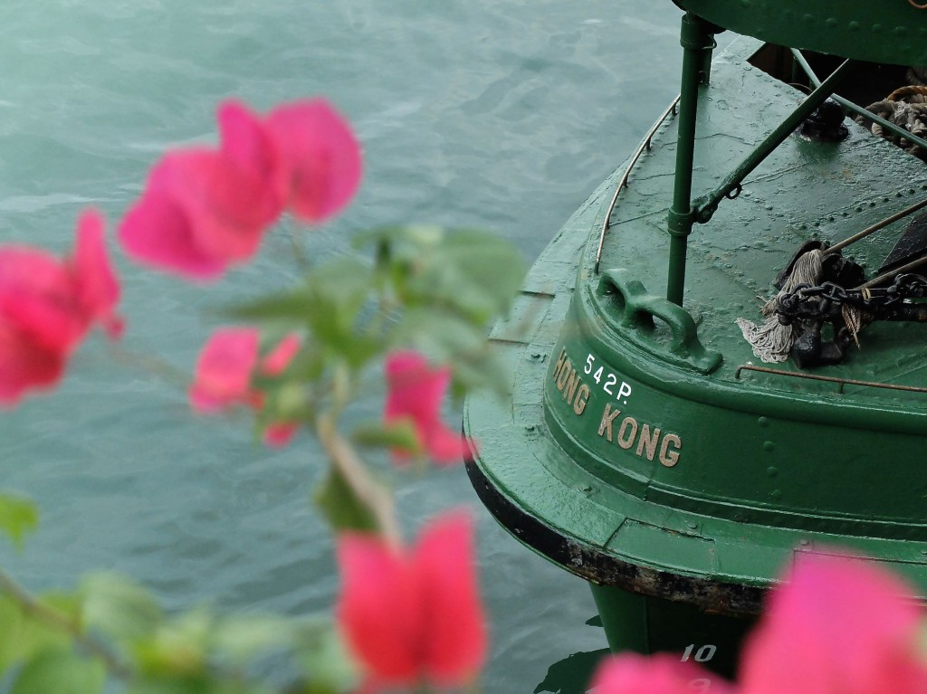 Hong Kong Star Ferry flowers