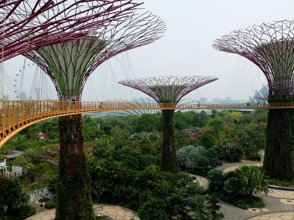 Singapore Gardens by the Bay sky tree walkway