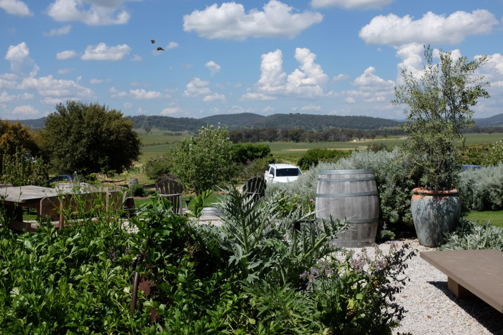 mudgee-lowe-cellar-door-view