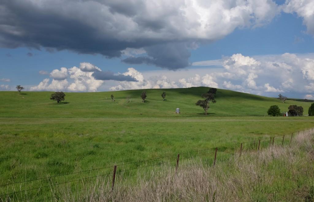 roadtrip-mudgee-rylstone-landscape