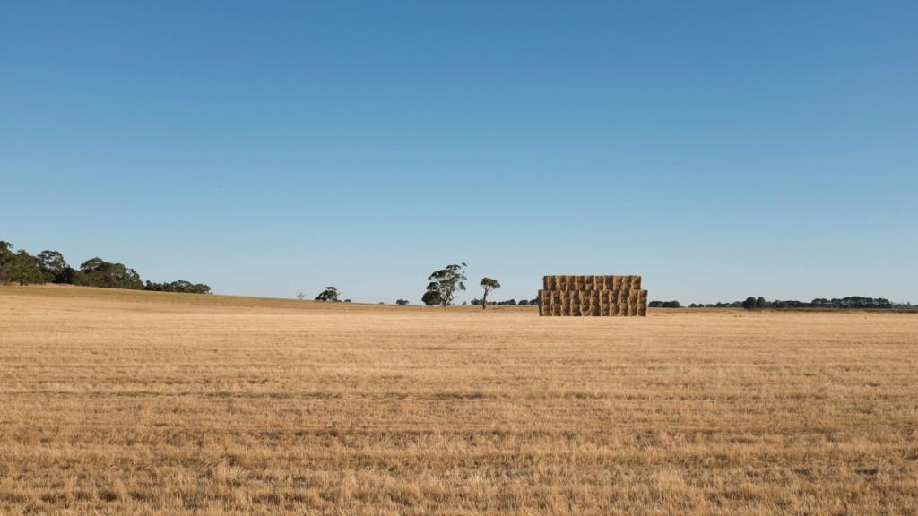 rural-victoria-square-hay-bales-2